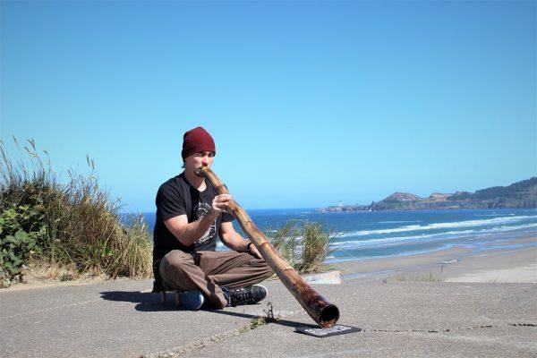 Agave didgeridoo
